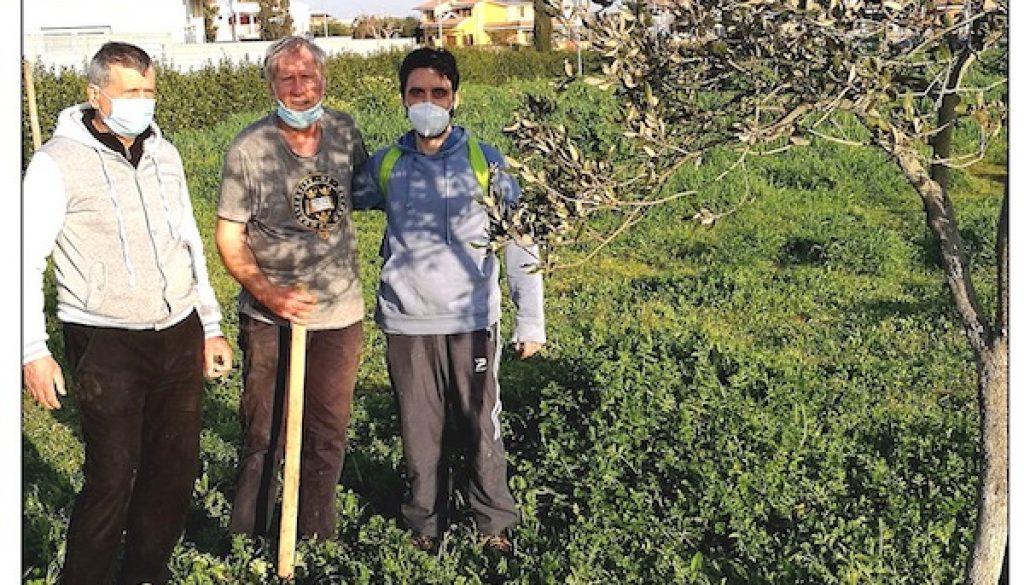 3 Alberi Top Garden Leccio viale Mediterraneo iMG-20210224-WA0041[1] copia
