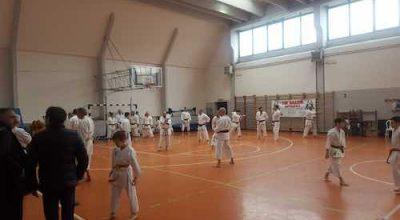 Karate Ladispoli copia