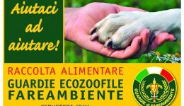 raccolta ecozoofile