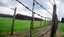 Campo concentramento