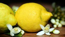 lemons-2245524_640