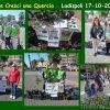 Ladispoli 2021 adotta (e cresci) una quercia Immagine