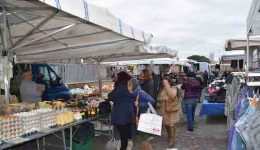 Ladispoli mercato