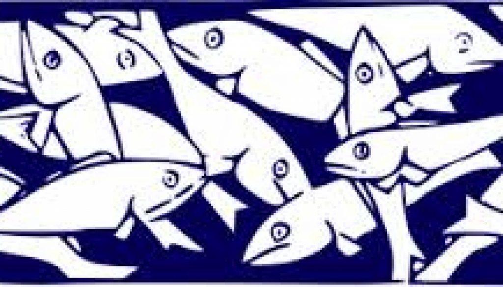 sardine 1